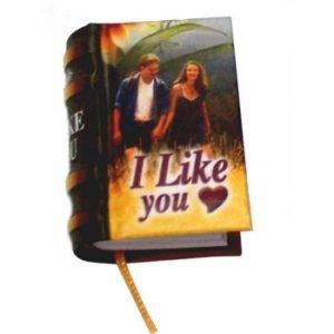 miniature book I like you