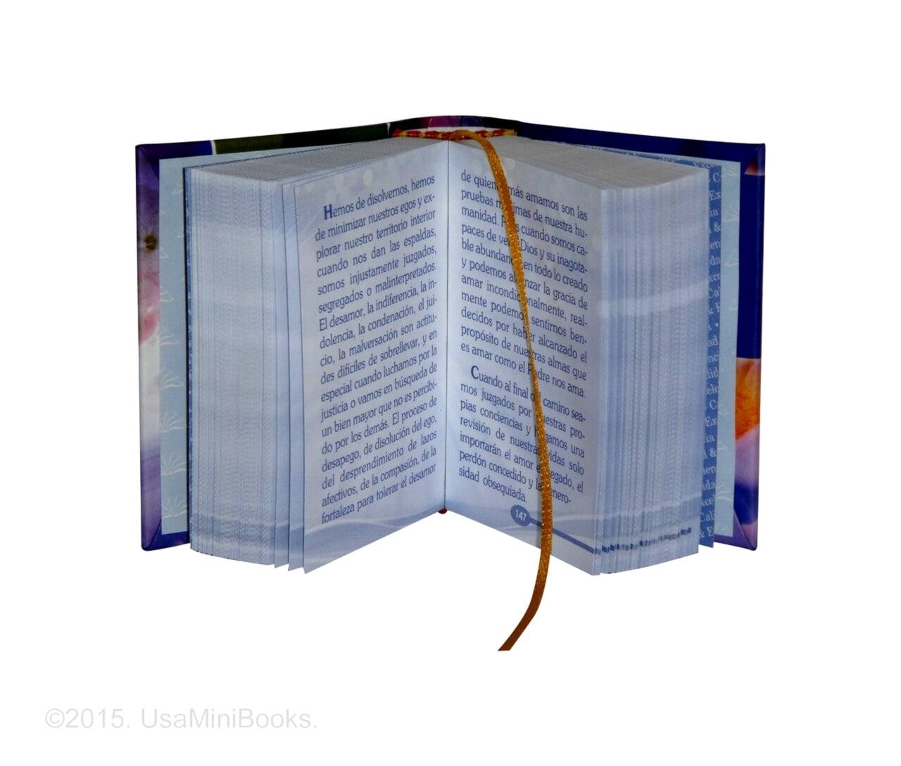 Diario_Espiritual-1-miniature-book-libro