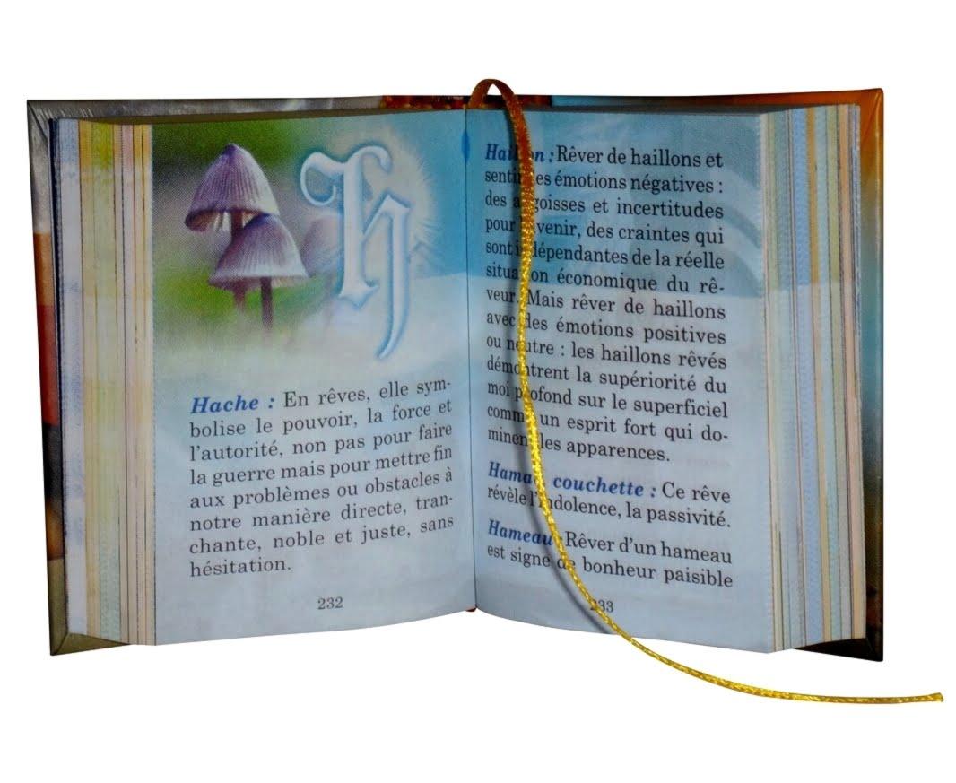 Dictionnaire-des-reves-1-miniature-book-libro