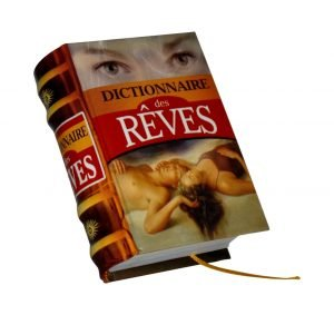 Dictionnaire des reves miniature book libro