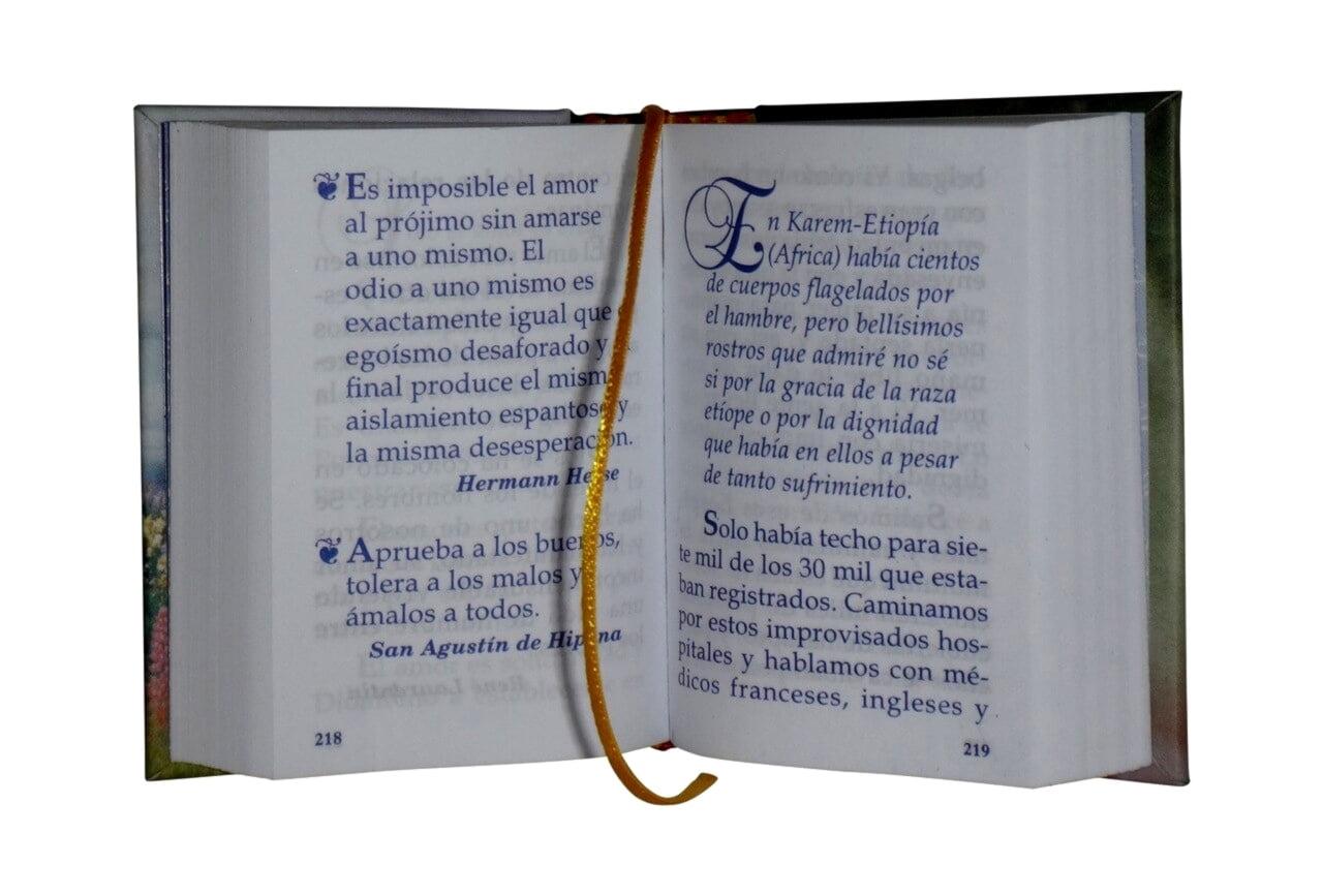 El_Amor2-miniature-book-libro