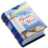 guiding-words-ingles-minilibro-minibook-librominiatura